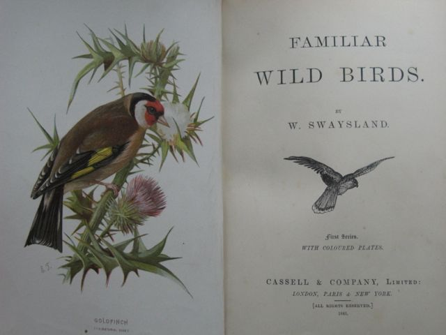 Image for FAMILIAR WILD BIRDS 4 volumes.